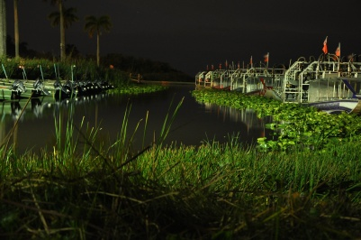 Airboats, Holiday Everglades Park